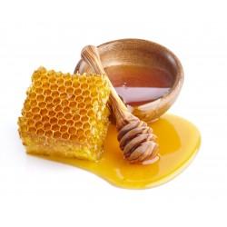 Prodej medu- Včelí farma Štěpánovi- Tábor