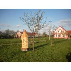 Prodej medu- Pavel Kindl-okres České Budějovice