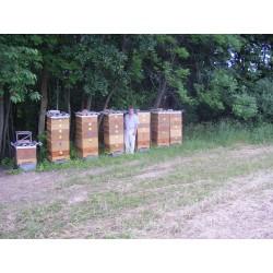 Prodej medu- Jaroslav Facek- okres Šumperk
