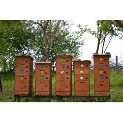 Včelí farma Hesovi- okres Kladno