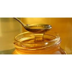 Prodej medu- Alena Cahová- okres Břeclav