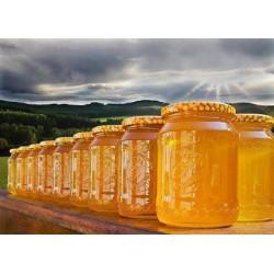 Prodej medu Aleš Staňko- Klimkovice- okres Ostrava