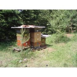 Prodej medu Ivan Vévoda- Švábenice- okres Vyškov