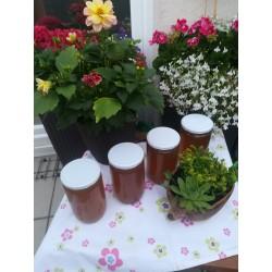 Prodej medu- Robert Patsch- Chanovice- okres Klatovy