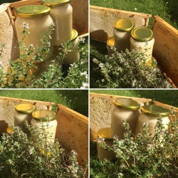 Prodej medu Milan Janyška- Sedlnice- okres Nový Jičín