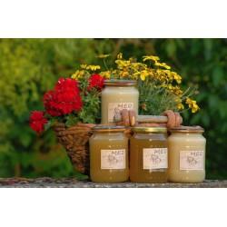 Prodej medu Filip Vambera- Sychrov- okres Liberec