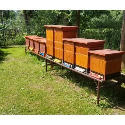 Prodej medu Tomáš Nový- Polanka nad Odrou- okres Ostrava