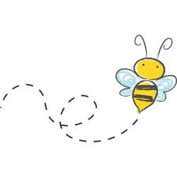 Prodej medu- Jaromír Sedliský- okres Svitavy