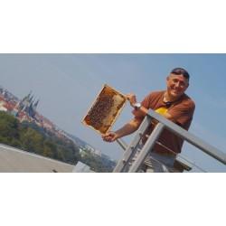 Prodej medu Augustin Uváčik- Praha 6