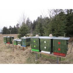 Včelařství Počátky- okres Pelhřimov