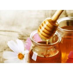 Prodej medu- Jan Štěch- okres Tábor