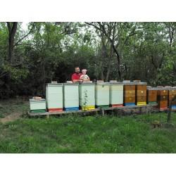 Prodej medu- Petr Švanda- okres Uherské Hradiště
