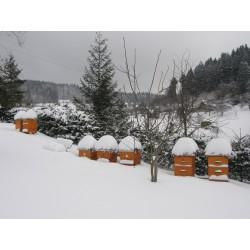Prodej medu- Milan Dašek- okres Ústí nad Orlicí