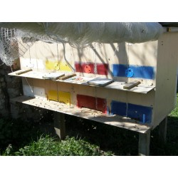 Prodej medu- Dragan Caran- okres Znojmo