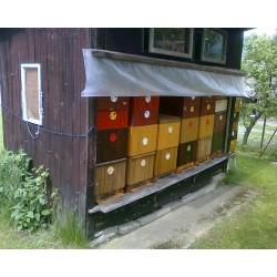 Prodej medu- František Musil- okres Benešov