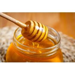 Prodej medu- Farma Podlužany- okres Nymburk