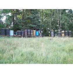 Prodej medu- Pavel Flám- okres Zlín