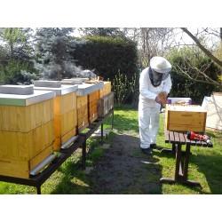 Prodej medu- Tomáš Sobotka- Kopřivnice- okres Nový Jičín