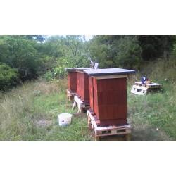 Prodej medu- Oldřich Závodník- Maršov, Brno-Líšeň, Velká Bíteš