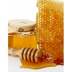 Prodej medu- Jan Černohous- Nekvasovy- okres Plzeň-jih